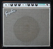 Guyatone Reverb Combo GA-1030 Backline Rental Munich Europe Film production